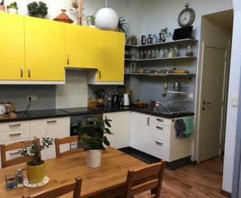 Location Appartement meublé 3 pièces Mirepoix (09500) - Centre ville